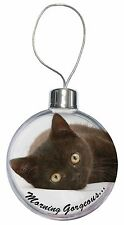 Black Cat 'Morning Gorgeous' Christmas Tree Bauble Decoration Gift, MG-131CB