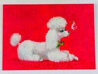 Vintage Unused Norcross Christmas Greeting Card White Poodle Blue Eyes Holly MCM