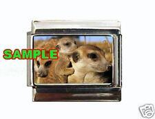 Meerkat #3 (family) Custom Italian Charm Kalahari cute!