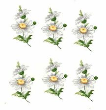"6 White Daisy Daisies Flower Floral 1-3/8"" Waterslide Ceramic Decals Xx"
