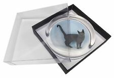 Russian Blue Cat Glass Paperweight in Gift Box Christmas Present, AC-108PW