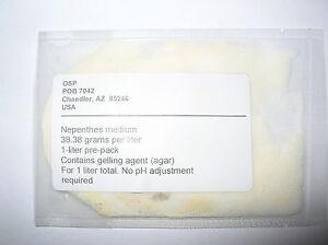 Nepenthes flasking medium