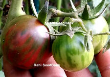 Black Vernissage Tomato - A Tomato with Deep Mahogany Striped with Green Shed!!