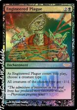 Engineered Plague // FOIL // Presque comme neuf // FNM: promos // Engl. // Magic the Gathering