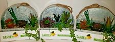 A26 Garden Party Metal Wall Planter With Succulent lot of 3. NEW 8""