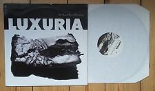 """Luxuria The Beast Box Is Dreaming 12""""  Magazine Post punk synth"""