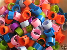 50 X NEW BRIGHT CLIP LEG RINGS 16MM /  CHICKENS, PULLETS, HENS