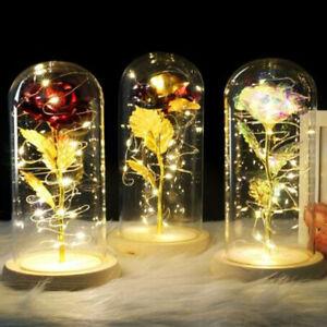 Enchanted Forever Rose Flower In Glass LED Light Wedding Birthday Romantic Gift