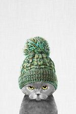 FUNNY KITTEN WEARING A HAT ART PRINT 16x20 whimsical animal face head poster