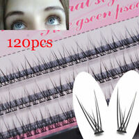 0.10 Thickness C Curl Mink Individual Cluster Flare Lashes False Eyelashes New