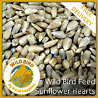 Sunflower Hearts Wild Bird Feed- NO MESS PREMIUM KERNELS ALL YEAR ROUND SEED