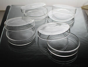 Qty 2 x Disposable Petri Dish Plastic with cover 35mm, Made in Canada