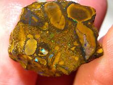 40 cts Australien Rohstein Koroit Matrix Opal Boulder Rough Sammlerstein E35