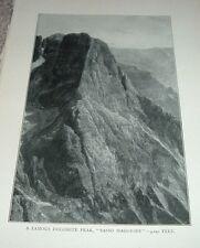 1903 Antique Print A FAMOUS DOLOMITE PEAK SASSO MAGGIORE 9240 Feet Italy