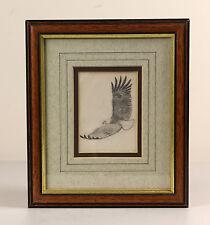 John Cyril HARRISON | fine ORIGINAL pencil sketch | FISH eagle bird ornithology