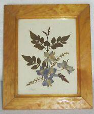 Vintage Framed Pressed Flowers ~Madrid, Spain ~ 1981~ Artesania Miguel El Rastro