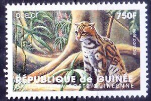 Guinea 1998 MNH, Ocelot, Wildcats, Wild Animals
