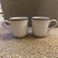 (2) Noritake Stoneware 8667 Sierra Twilight Mugs/cups