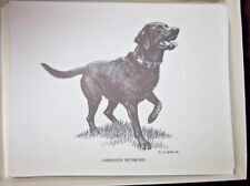 Season Greeting Labrador Retriever Note Cards Buy 1 Box & 2nd Box Cards Free