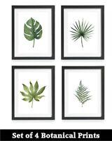 4 Botanical Prints,Leaf Prints,Living room Prints,Plant Prints,Tropical Prints