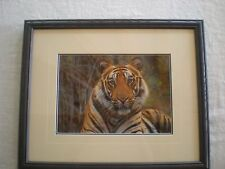 "Thomas D. Mangelsen ""Survivor-Bengal Tiger"" Out of Print, Original  Photo signed"