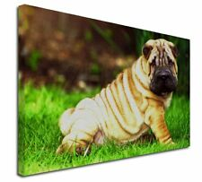 More details for cute shar-pei dog x-large 30