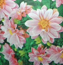 20 x paper NAPKINS  FULL PACK dahlias PARTY  table 95