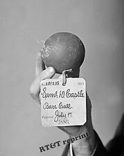 Photograph of the Original Baseball Patented in the Year 1883    8x10