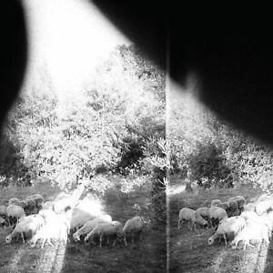 Godspeed You! Black Emperor. Asunder, Sweet and Other CD New & Sealed