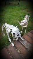 Halloween LIGHT + SOUND Cat Dog Corpes Dead Animal Skeleton Decoration Prop pet