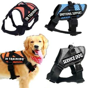 Pets Harness Mesh Padded Non-Pull Chest Strap Puppy Walking Vest Collar Outdoors