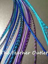 Lot 10 Whiting Grizzly Feathers Hair Extensions long skinny XL blue Purple COOLS