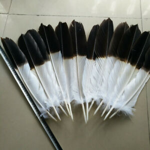 12pcs rare two-color tail feathers, full set of tail feathers, 40-45 cm long