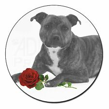 Staff Bull Terrier Dog (B+W) with Red Rose Fridge Magnet Stocking F, AD-SBT6R2FM