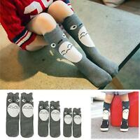 Wholesale Baby Children Toddlers Girls Knee High Socks Tights Leg Warmer 0-6Y UP