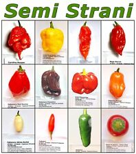 120 Seeds HOT CHILI PEPPERs Classic Collection: CAROLINA REAPER, MORUGA, GHOST