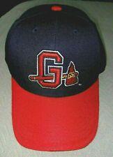 MILB Gwinnett Braves Stripers Chop On Tomahawk Hat Cap Atlanta - DEADSTOCK LOGO