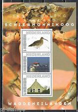2751-Ab-13 Waddeneilanden Schiermonnikoog 1  Postfris MNH - ZEER LASTIG VELLETJE