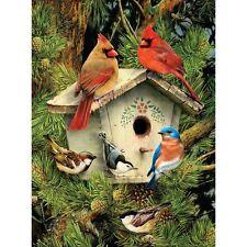 Malen nach Zahlen einheimische Nachbarn Vogel  Tiermotiv  Größe 22 cm x 28 cm