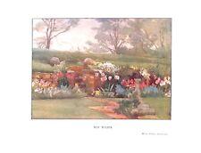 May.Tulips.Floral print.1906.Antique print.Botanical.Flower print.Tulip.Garden