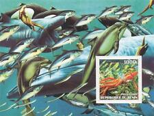 Sealife peces asesino ballena delfín calamar Republique du Benin 2002 hoja de sellos estampillada sin montar o nunca montada