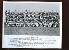 Original 1965 AFL Football Buffalo Bills 8 X 10 Team Photo