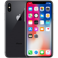 Apple iPhone X - 256GB  Space Gray (GSM UNLOCKED) A1901  A  GRADE