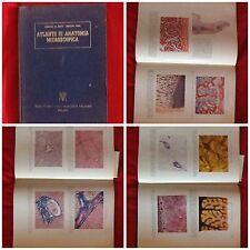 ATLANTE DI ANATOMIA MICROSCOPICA 194 MICROZINCOCROMIE MEDICINA