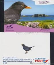 ALDERNEY - 2007 MARKENHEFT 304-09 MH 0-9 VÖGEL BIRDS PASSERINES gestempelt