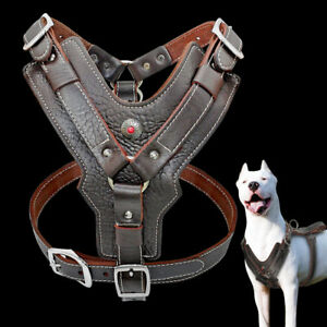 Genuine Leather Pet Dog Harness with Handle for Large Breeds Pitbull Rottweiler