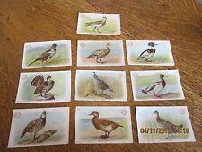 10 Game Bird Series Cards (1904) Arm & Hammer Church & Co. - FREE SHIPPING!!