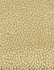 """POLLACK CHAMPAGNE CONCH SHELL DOTS FRENCH VELVET FURNITURE FABRIC 3.75 YARD 51""""W"""