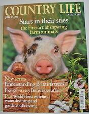 Country Life Magazine. July 13, 2011. Stars in their sties. Fine art farm animal