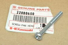 NOS Kawasaki ZX900 ZX1000 W1 W2 KZ400 A1 A7 F4 KV75 KX250 Engine Pan Head Screw